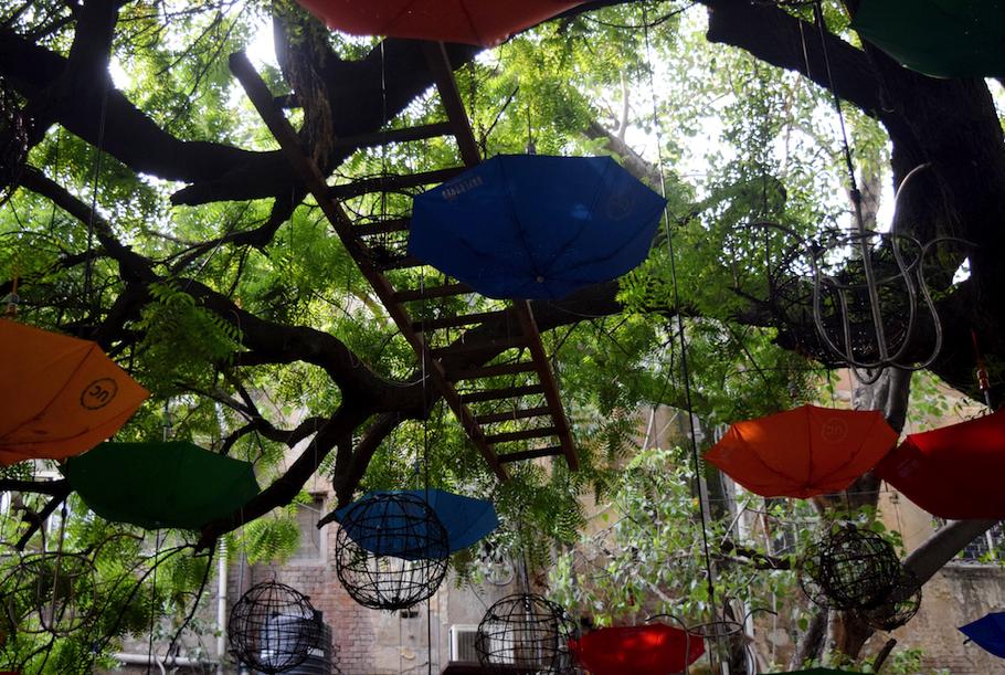 UC Umbrellas Everywhere